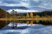 SCOTLAND CAIRNGORMS NATIONAL PARK