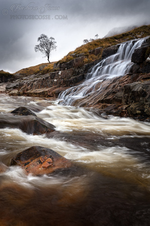 Glen Etive. River Etive. Waterfall and Tree #1.  Scotland.