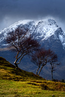 Blaven and Birch Trees, Kilbride by Torrin, Isle of Skye, Scotland.