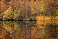 Highland Lochan. Autumnal Hues and Reflections. Scotland.