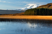 Blaven. Icy Lochan Cill Chriosd and reeds. Isle of Skye. Scotland.