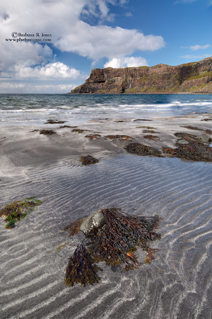Talisker Beach sand patterns. Isle of Skye. Scotland.