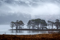Loch Maree. Pines and Winter Mists. Kinlochewe. Wester Ross. Highland Scotland.