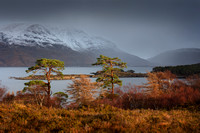 PICTURES OF SCOTLAND. GLEN TORRIDON.