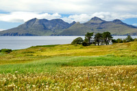 Cleadale. A Summer view to Rum. Isle of Eigg. Small Isles. Scotland.