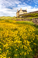 Balnakiel House. Summer Flowers. Durness. Northern Scotland.