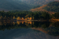 Torridon. Loch Clair. Tree reflections in Autumn. Wester Ross. Highland Scotland.
